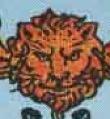 Il simbolo del Leone nel Due di Coppe