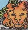 Il simbolo del Leone nel Mondo